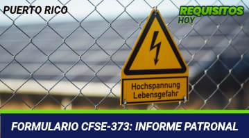 Formulario CFSE-373