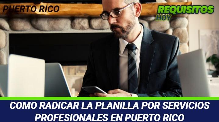 Planilla servicios profesionales