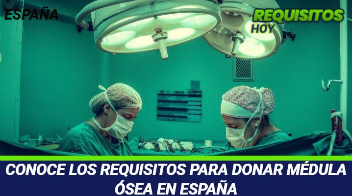 Requisitos para Donar Medula