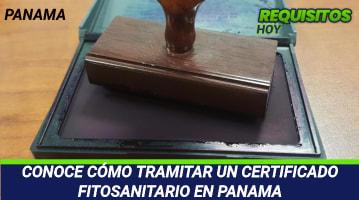 CONOCE CÓMO TRAMITAR UN CERTIFICADO FITOSANITARIO EN PANAMA