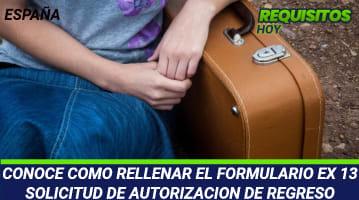 Formulario EX 13