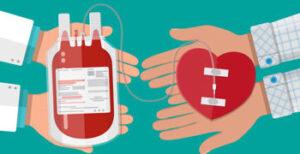 Donar sangre conclusion