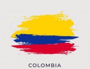 Viajar a Colombia conclusion NR