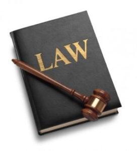 fundamenteo legal notario publico NR