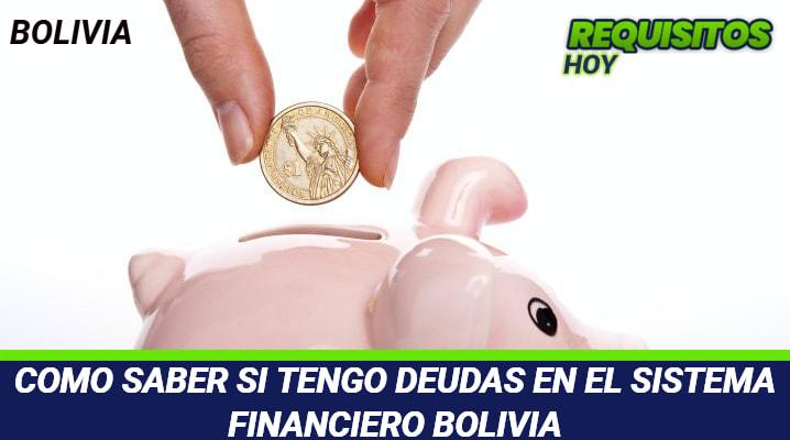 Como saber si tengo deudas en el Sistema Financiero Bolivia