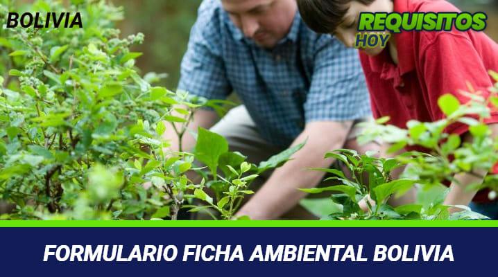 Formulario Ficha Ambiental Bolivia