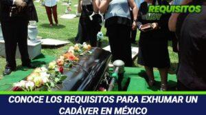 Los Requisitos Para Exhumar Un Cadáver En México