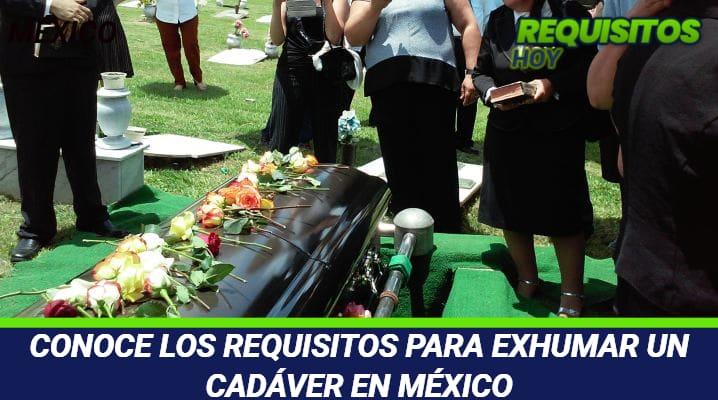Requisitos para exhumar un cadáver en México