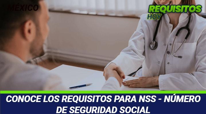 Requisitos para NSS