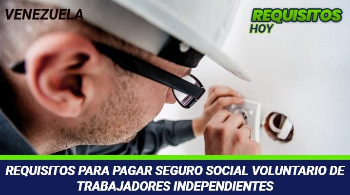 Requisitos para Pagar Seguro Social Voluntario