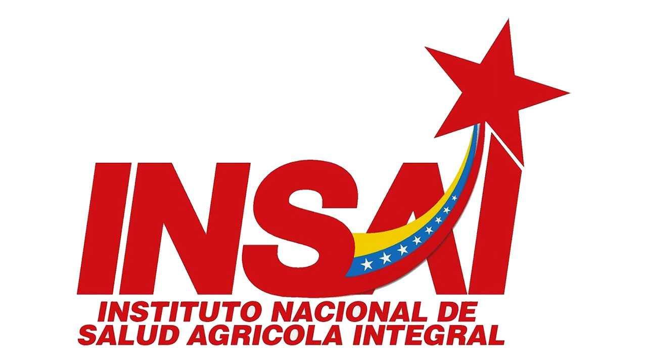 insai venezuela