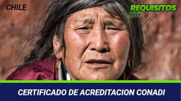 Certificado de acreditación Conadi