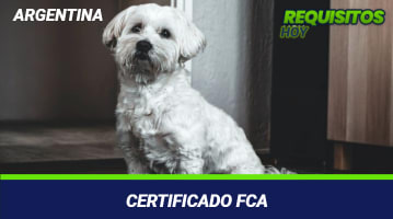 Certificado FCA