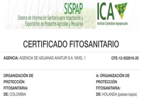 Certificado fitosanitario7